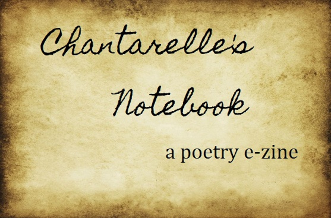 Chantarelle's Notebook